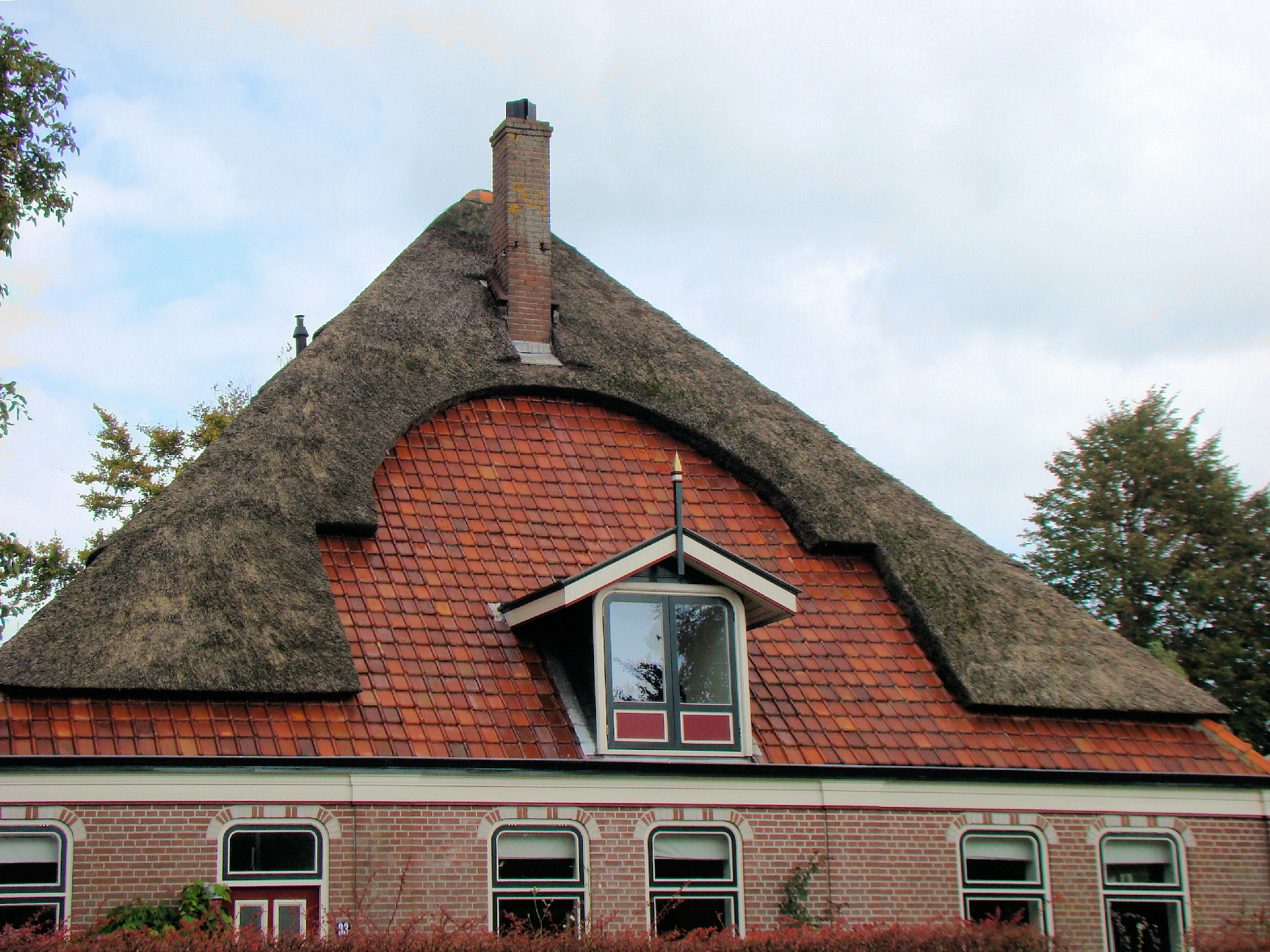 Partially_thatched_roof.jpg